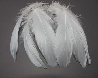Goose Shoulder Feathers - Light Grey Ombre