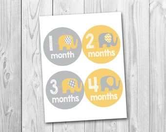 Printable monthly onesie stickers, yellow and gray, baby's first year, photo prop stickers