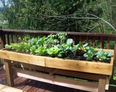 Raised Patio Garden - Wood Garden Box - Garden Bed - Vegetable Garden - Homegrown Food