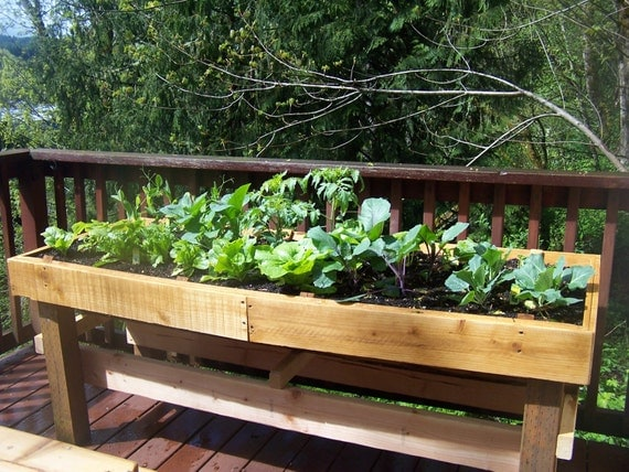 Items Similar To Raised Patio Garden   Wood Garden Box   Garden Bed    Vegetable Garden   Homegrown Food On Etsy