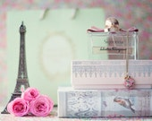 French decor, paris decor, girly wall art, peonies art, perfume print, book art, peonies print, eiffel tower decor, girly wall decor, pink
