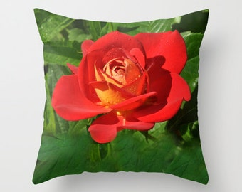 Valentine Red rose pillow cover