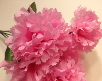 pink carnation bouquet  (SF)
