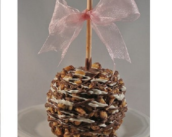 TWO Milk Chocolate Peanut Gourmet Chocolate Caramel Apples