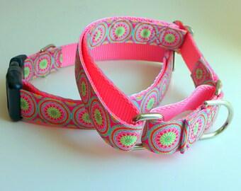 "Spring Dog Collar 3/4"" Girl Dog Collar and Leash Pastels / Feminine Collar and Leash Girly Dog Collar / Martingale Collar for Female Dog"