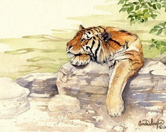 Safari print, tiger. Limited edition giclee print of original watercolor painting by Cinda Serafin. Signed and numbered.