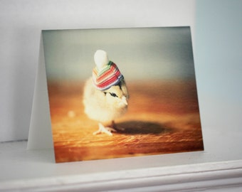 Greeting Card Set Chick in Rainbow Hat Folded Photo Chicken Stationary Baby Animals