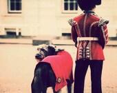 London photograph, fine art print, retro travel photography, dog picture, England art - Man's Best Friend