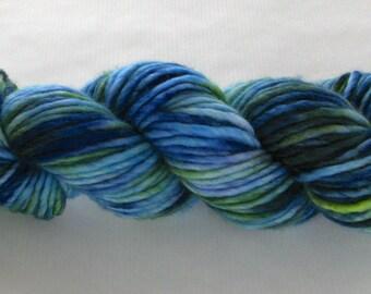 Hand Dyed Bulky Yarn - Frances (Indian Motmot)
