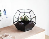 "FREE SHIPPING - geometric glass terrarium ""dodecahedron"" - handmade glass terrarium - planter for indoor gardening"