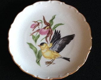 Vintage Barvarian Plate with Yellow Finch Bird by Schumann Arzeberg Germany (LDT4)