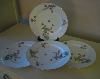 Vintage Set of 4 Vignaud Limoges France Mutli Color Bird Butterfly and Flower Dinner Plates