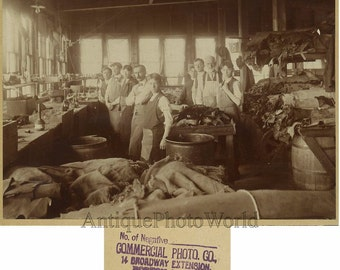 Hide skin leather processing factory workers photo