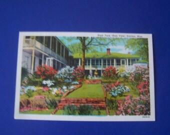 Farm-Natchez Mississippi -VINTAGE PAPER   1950 post card-Graduation Writing Basket