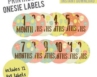 INSTANT DOWNLOAD - Monthly Onesie Labels - Vintage Hot Air Balloon Onesie Labels (Months 1-12)