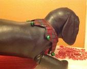 Dog Christmas Jingle Jester Party Collar