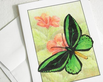 Birdwing Butterfly Card, Green Rainforest Butterfly Art, Tropical Conservation Blank Card