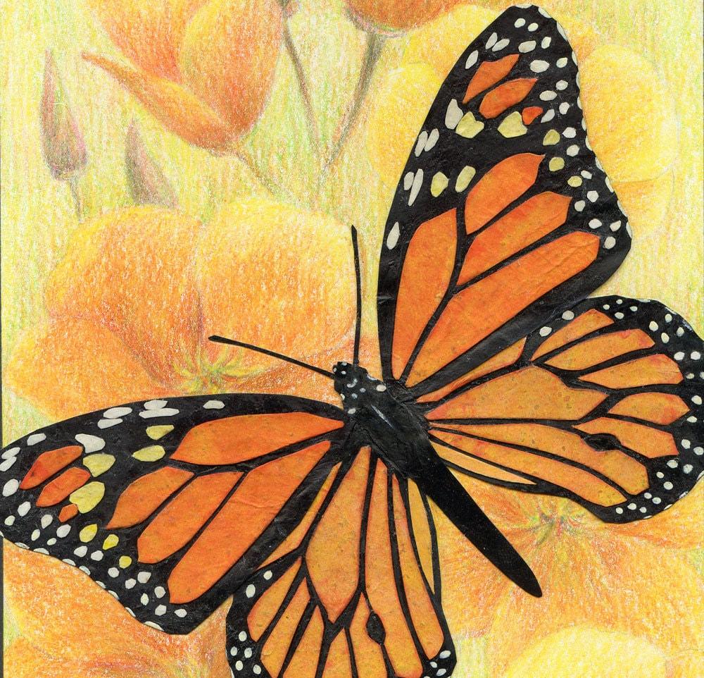 Monarch Butterfly Art Print Orange Butterfly & Poppies