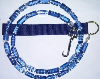 Candy Blueberry leash for any animal.
