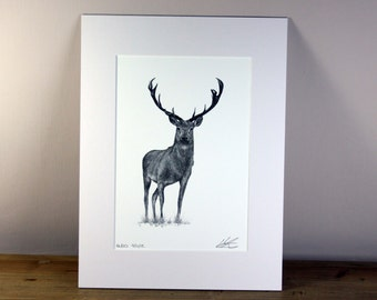 Stag Limited Edition Print