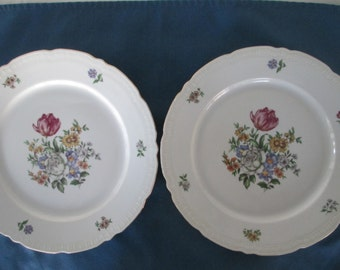 Vintage Europa China White Floral Dinner Plates Set Of  Two (2)  Marked Porcelain Collectibles Serving Housewares Dinnerware