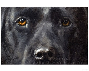 Black Labrador Dog Portrait by award winning artist JOHN SILVER. Personally signed A4 or A3 size Print. BL008SP