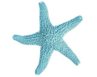 Starfish. Printable Art. Instant Download. Starfish Iron-On Transfer Art. Digital Art.