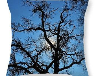 California Oak Tree Decor Pillow, Sunny tree pillow, CA Oak Tree Room Accent pillow - Photography Throw Pillow, Washable pillow, 14 x 14