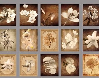 Vintage Flowers Digital  Collage Sheet Download Fabric Illustration Picture Art