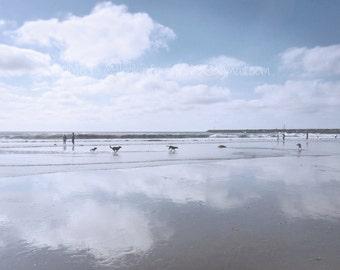 "Dog Beach Photo, Dog Lover Photo,Doggie Heaven,San Diego,Ocean Beach, California,Instant Digital Download files,TWO-Printable 4x5"" JPEGfiles"