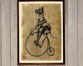 Rustic home decor Dog poster Great dane print Dictionary art WA28