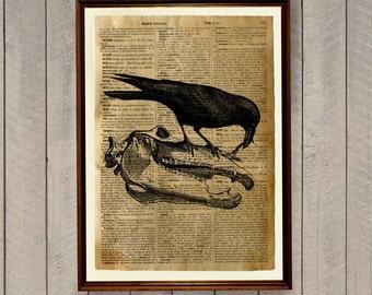 Crow print Raven poster Bird illustration WA162