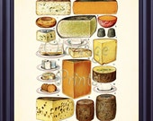 Antique Culinary Print CHEESE 8x10 Art Print Food Cookery Delicious Entrees Dishes Kitchen Decor Wall Art Vintage Plate Chart F0101