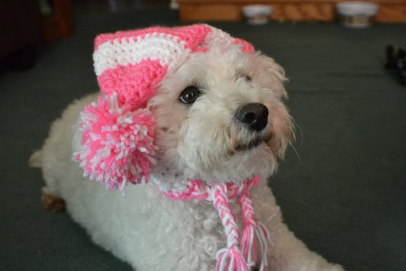 Crochet Pattern For Dog Hat With Ear Holes : Crochet Dog Hat with Ear Holes/ Crochet hat for Dog