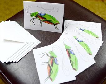 Green Katydid Robotic Insect Blank Card