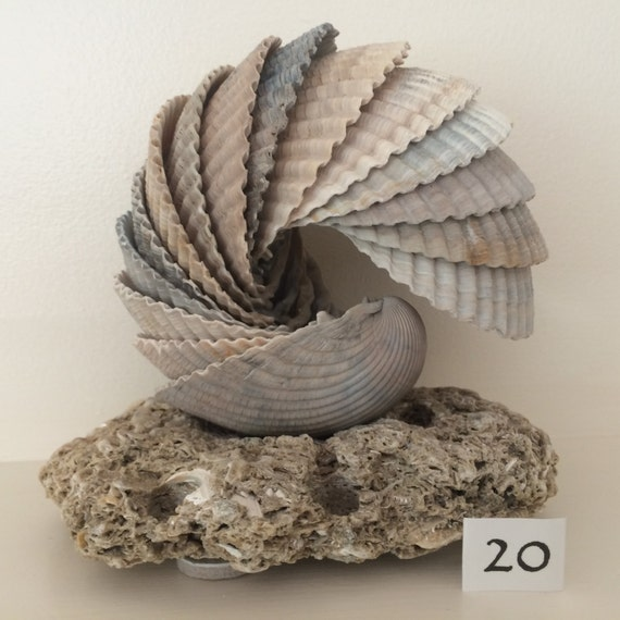 Cockle shell sculpture on sea stone base edisto beach south for Big seashell crafts