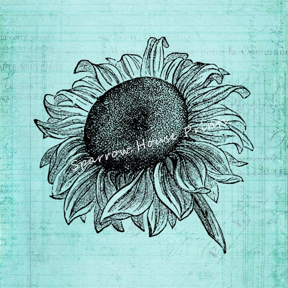 Vintage Sunflower Wall Decor : Items similar to antique sunflower wall art plant print