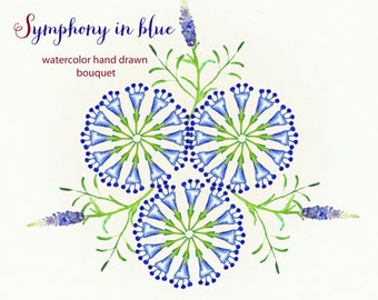 Clipart digital Hand Drawn. Cornflower blue flowers Romantic wedding clipart, watercolors. Blue bright bouquet for blog, invitations.