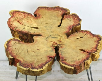 "Flaming Red Box Elder Live Edge Coffee Table with 4 Industrial Steel Hairpin Legs  ""Aspen"""