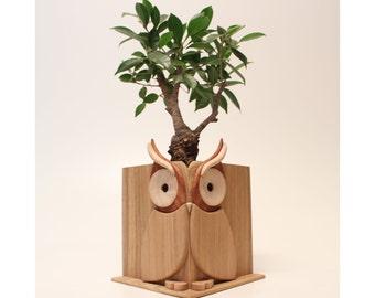 Handmade Wooden Owl Shaped Pot