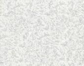 Fairy Frost Zirconium - 1 yard - Michael Miller