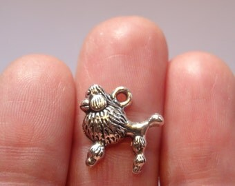12 French Poodle Dog Charms Antique Silver 14 x 14mm - SC105