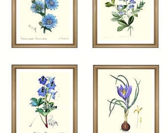 "Blue flowers print Set. Botanical Print Set. ANY 4 blue flower prints. Blue wall art. Flower print set. 5x7""  8x10""  11x14"""