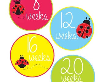 Weekly Pregnancy Stickers, Pregnancy Announcement, Pregnancy Belly Stickers, Pregnancy Photo Prop, Maternity Stickers, P21