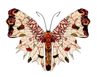 11x14 Autumn Wings Butterfly Print