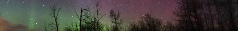 StargazingMermaid