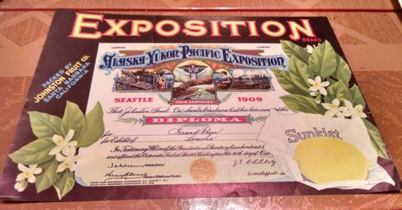 Vintage 1920s Fruit Crate Label Exposition Brand Lemons Sunkist