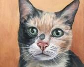 Pet Memorial, cat painting, custom pet portrait, pet painting, cat memorial, custom cat portrait, cat paintings, acrylic 12x12 wooden canvas