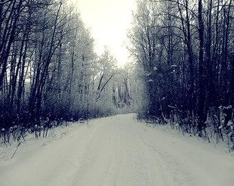 "Nature Photography - Canada, winter landscape, print 8x10, fine art photopragh, nature still life - ""Winter Path"""