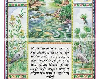 Judaica,Art,Who has formed man,Asher yatzar